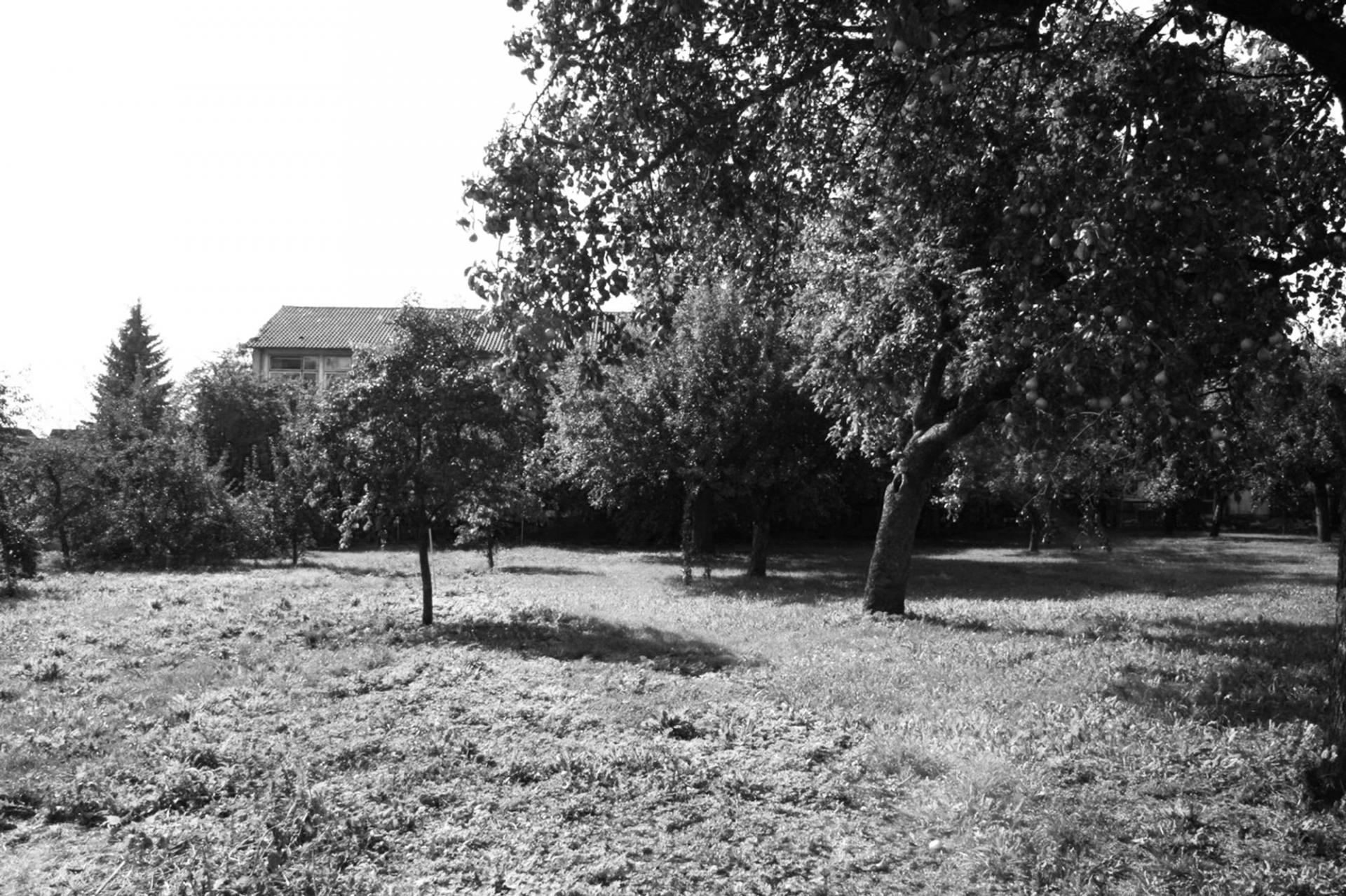Schenker Salvi Weber House S Ehingen