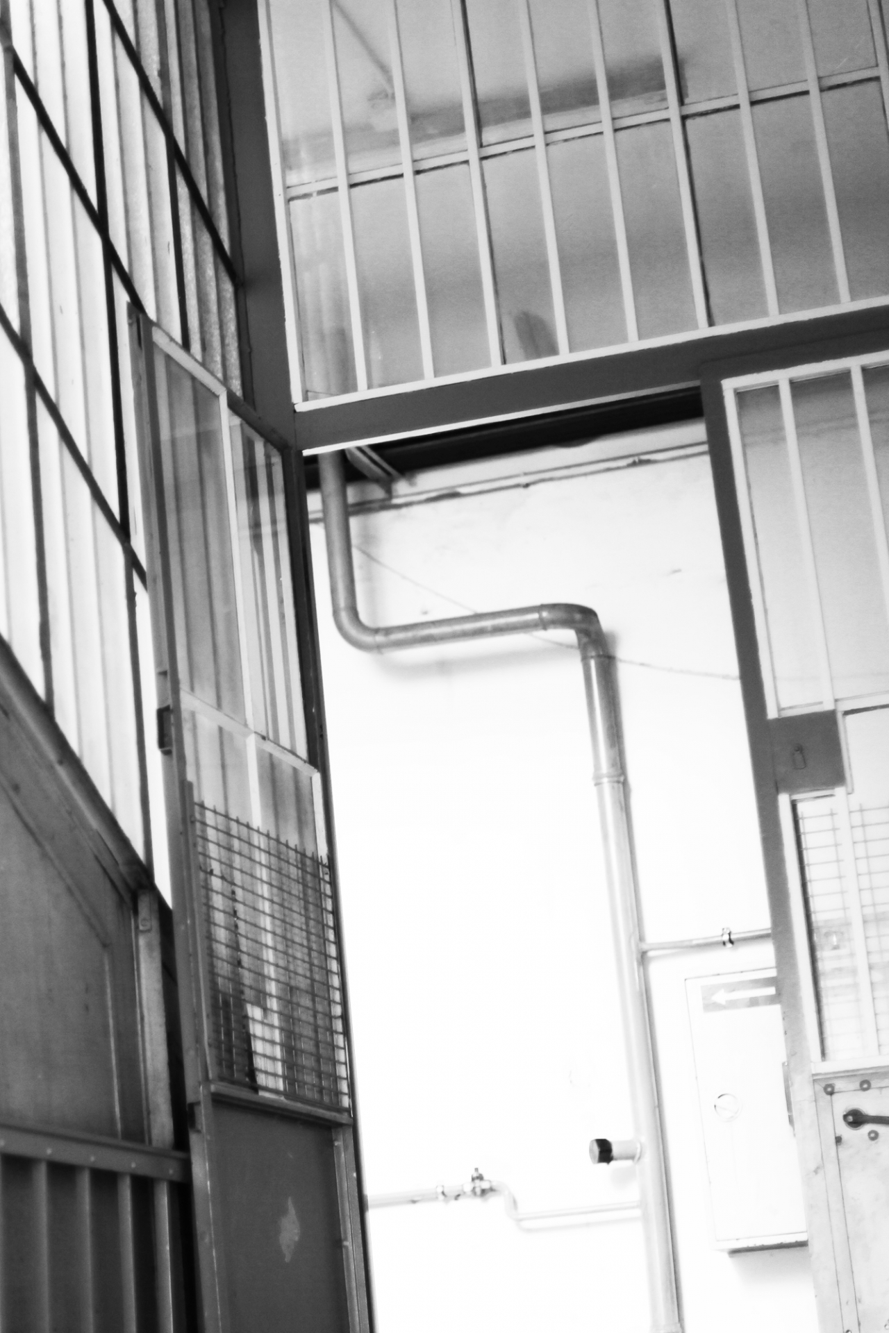 Schenker Salvi Weber Studio